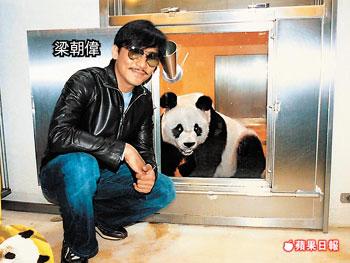 Tony Panda